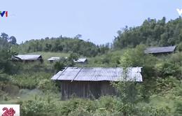 Nghịch lý tại khu định canh định cư ở Cao Bằng