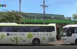 """Khách Trung Quốc ồ ạt tới Khánh Hòa bằng """"tour 0 đồng"""""""