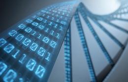 Tìm giải pháp lưu trữ thông tin vào ADN của con người