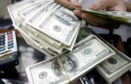 Lượng USD NHNN mua vào tăng mạnh sau điều chỉnh giá