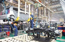 Thuế nhập khẩu ô tô về 0%, doanh nghiệp nội chịu nhiều sức ép