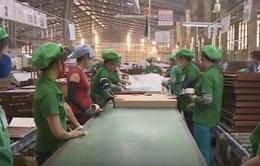 Đa dạng hóa thị trường xuất khẩu - Doanh nghiệp gỗ hạn chế rủi ro