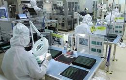 Doanh nghiệp Nhật Bản muốn mở rộng kinh doanh tại Việt Nam