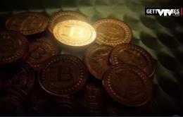 Đồng Bitcoin liên tục sụt giá sau khi chạm mốc kỉ lục