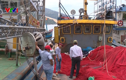 Vụ tàu cá vỏ thép mới đóng đã hỏng: Tạm dừng hợp đồng mới với 2 doanh nghiệp