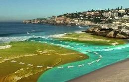 Gia tăng các vụ đuối nước do dòng xoáy gần bờ