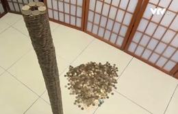 Chàng trai trổ tài xếp gần 3.500 đồng xu thành chồng cao gần 1m