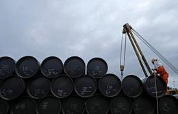 IEA: Giá dầu sẽ biến động mạnh hơn trong năm 2017
