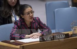 Việt Nam kêu gọi LHQ xây dựng chiến lược dài hạn và toàn diện về ngăn ngừa xung đột