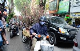 Chợ hoa Hoàng Hoa Thám rực rỡ ngày giáp Tết