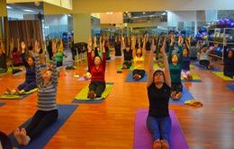 Thói quen tập Yoga mỗi ngày mang lại lợi ích cho sức khỏe