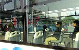 TP.HCM tổ chức hai tuyến xe bus miễn phí cho phụ nữ trong ngày 8/3