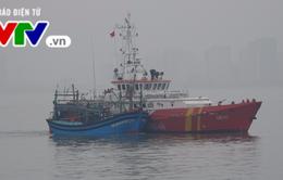 Đà Nẵng: Cứu nạn 7 thuyền viên và tàu cá bị hỏng máy, thả trôi trên biển