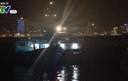 Cứu nạn 13 ngư dân tàu Bình Định bị hỏng máy trôi dạt trên biển