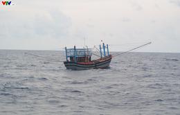 Bình Định: Gia tăng tai nạn tàu cá trên biển