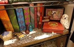 20 năm Harry Potter đến Việt Nam