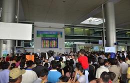 Đông đảo kiều bào về quê đón Tết, sân bay Tân Sơn Nhất quá tải