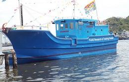 Tranh luận về phân cấp kiểm định tàu composite ở Khánh Hòa