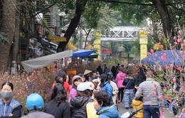 Café Sáng với VTV3: Chợ hoa Hàng Lược rực rỡ những ngày giáp Tết