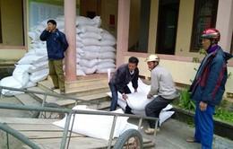 10 tỉnh đề xuất hỗ trợ gạo cứu đói Tết Nguyên đán
