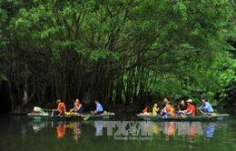 Du lịch Việt Nam: Khách quốc tế đến Việt Nam đã đạt trên 8,47 triệu lượt