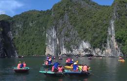 Tour du lịch Tết Nguyên đán tăng 20-30%