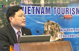 Xúc tiến du lịch Việt Nam - Ấn Độ