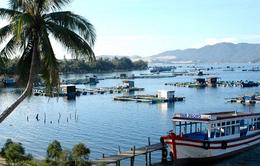 Doanh thu du lịch của Kiên Giang cán mốc 4.500 tỷ đồng