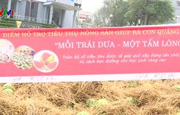 Hà Nội hỗ trợ tiêu thụ dưa hấu cho người dân Quảng Ngãi