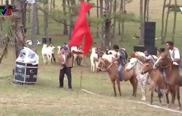 Đua ngựa không yên tại Đà Lạt