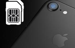 Năm 2018, sẽ có phiên bản iPhone hỗ trợ… 2 sim