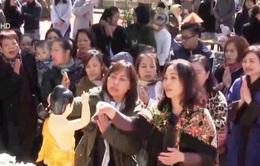 Hàng trăm phật tử tại CHLB Đức dự Đại lễ Phật đản