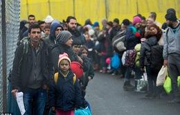 Hơn 3.500 vụ tấn công người tị nạn ở Đức trong năm 2016