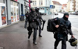 Đức: Cảnh sát tịch thu nhiều vũ khí, đạn dược tại Berlin