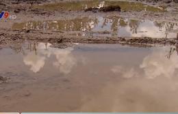 Gần 200 hộ dân ở Đồng Tháp mất đường vì nạo vét kênh thủy lợi