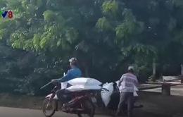 Buôn lậu đường ở Quảng Trị khó kiểm soát