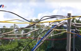 9 tháng đầu năm 2017, 22 người tử vong do tai nạn điện ở Cà Mau