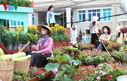 Khai mạc đường hoa Xuân tại Cần Thơ