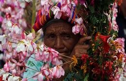 Lung linh lễ hội hoa ở El Savador