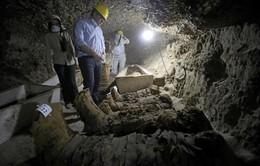 Ai Cập phát hiện 17 xác ướp cổ