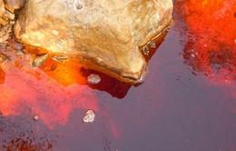 El Salvador là quốc gia đầu tiên cấm khai thác kim loại