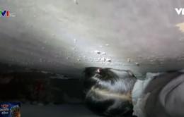 Giải cứu em bé mắc kẹt giữa hai bức tường tại Trung Quốc