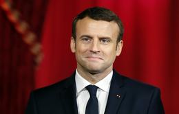 Tân Tổng thống Pháp thăm Đức