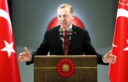 """Tổng thống Thổ Nhĩ Kỳ tố Đức hành xử như """"phát xít"""""""