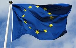 Sách trắng về tương lai châu Âu: Giấy khai sinh mới của 27 nước EU?