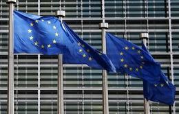 EU xem xét trừng phạt Hungary, Ba Lan và Czech