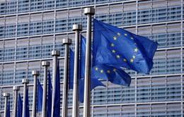 Thụy Sỹ trở thành nhà đầu tư lớn nhất vào EU năm 2016
