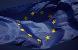 Italy, Đức và Pháp muốn có quyền phủ quyết việc nước ngoài mua các công ty của EU