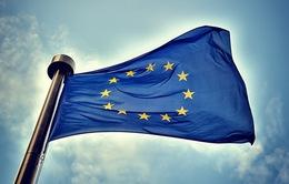 Châu Âu họp thượng đỉnh - nhiều vấn đề được đưa ra