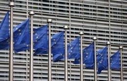 EC: Anh ngừng triển khai đàm phán thương mại với bên thứ ba